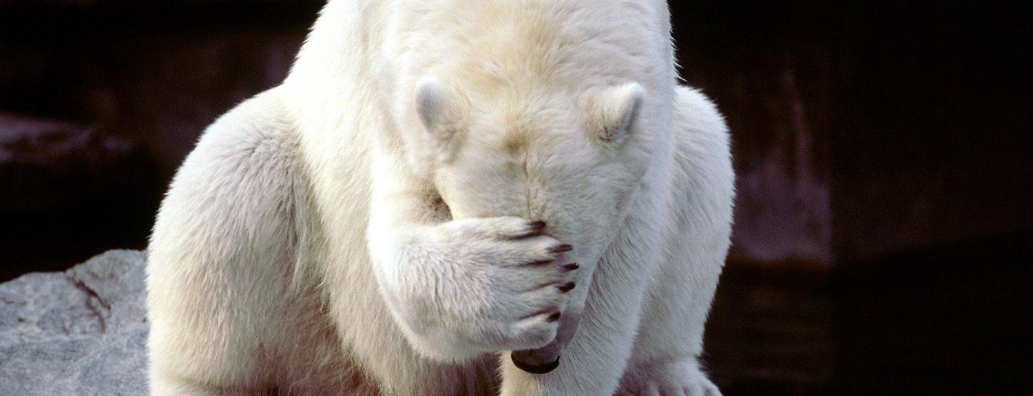 facepalm-wallpaper-1500x575