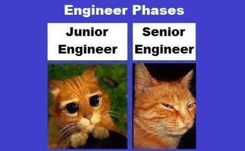 El rol de un ingeniero senior